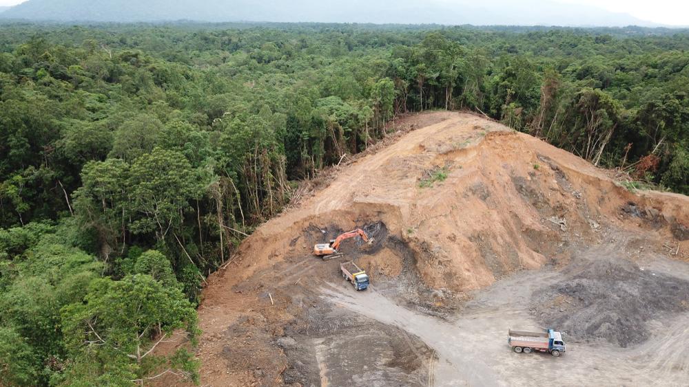 Ancaman Deforestasi